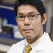 Ikezu Findings Prove Microglia Plays Crucial Role in Early Progression of Alzheimer's Disease